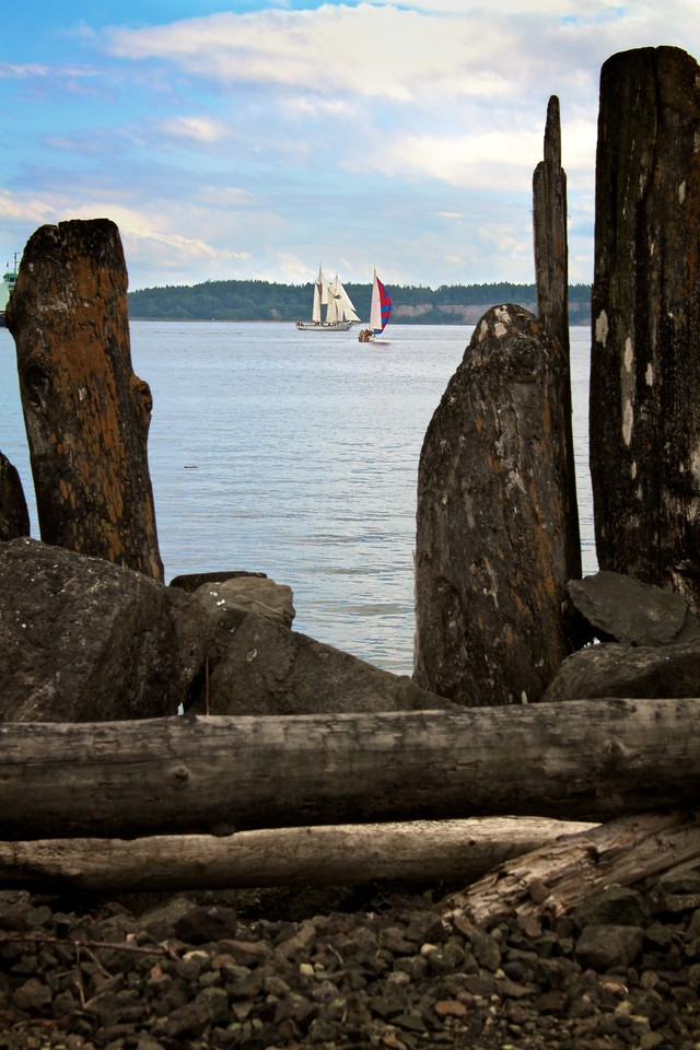 The sun was partially out on the weekend so many sail boats were taking advantage of the nice weather.
