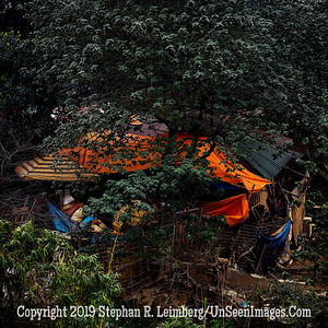 Whose Garden Was This - Copyright 2018 Steve Leimberg UnSeenImages Com  _DSF9690