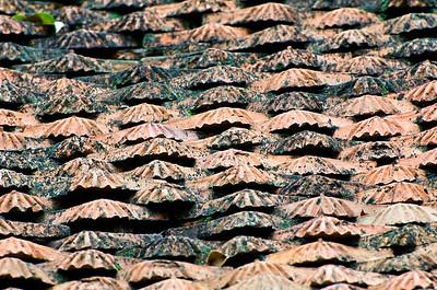Roof Tiles Temple of Literature-Hanoi-Vietnam