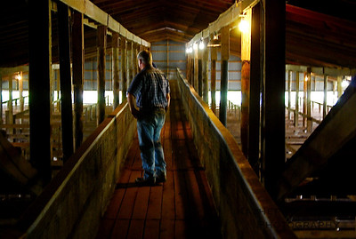 The Fauquier Livestock Exchange before the 2010 fire.