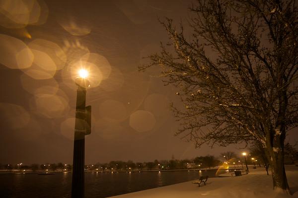 Light-Post and Tree. Richmond, VA. 2009