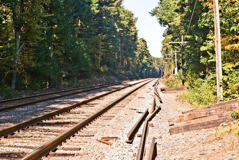 MBTA line meets Walden Pond trail