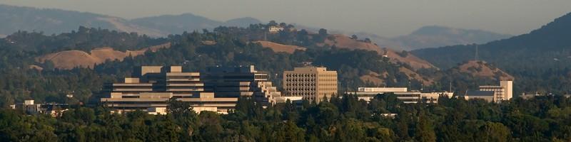 'Downtown' Walnut Creek CA
