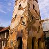 Harambe Village