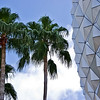 EPCOT sphere detail with palm trees