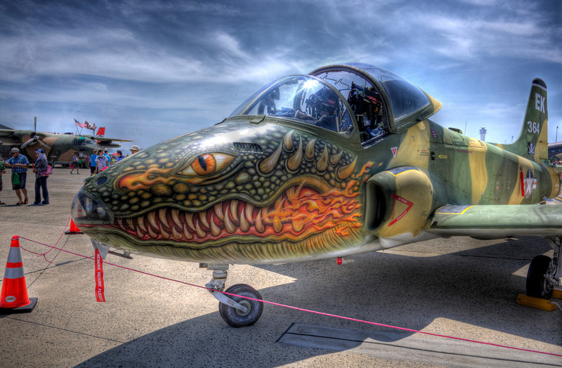 Amazing dragon face painted on the front of a military jet. This was taken during an airshow at Andrews Air Force Base, near Washington DC