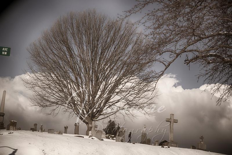 A Walk Through the Grave Yard