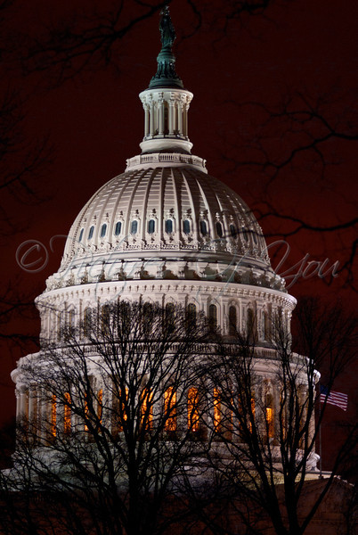 The State Capitol Building at night.