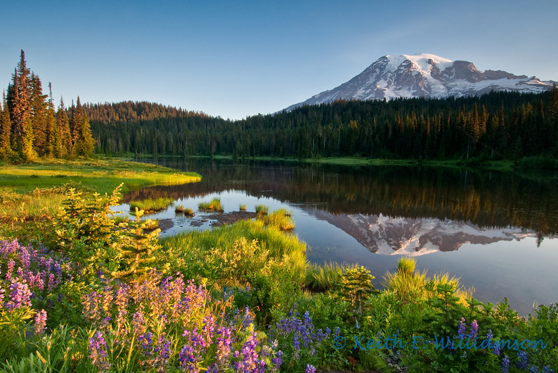Early morning light at Reflection Lake, Mount Rainier