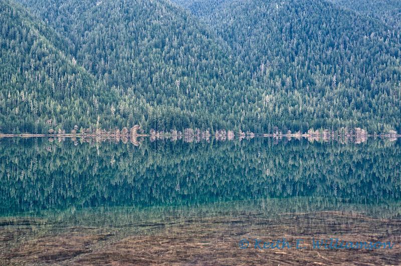 Lake Crescent, reflection 3