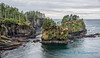 Cape Flattery, looking south