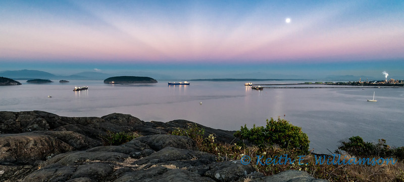 Anticrepuscular rays over Fidalgo Bay, with rising moon and earth shadow