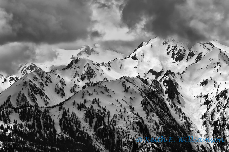 Olympic Mountains (Bailey Range), from Hurricane Ridge