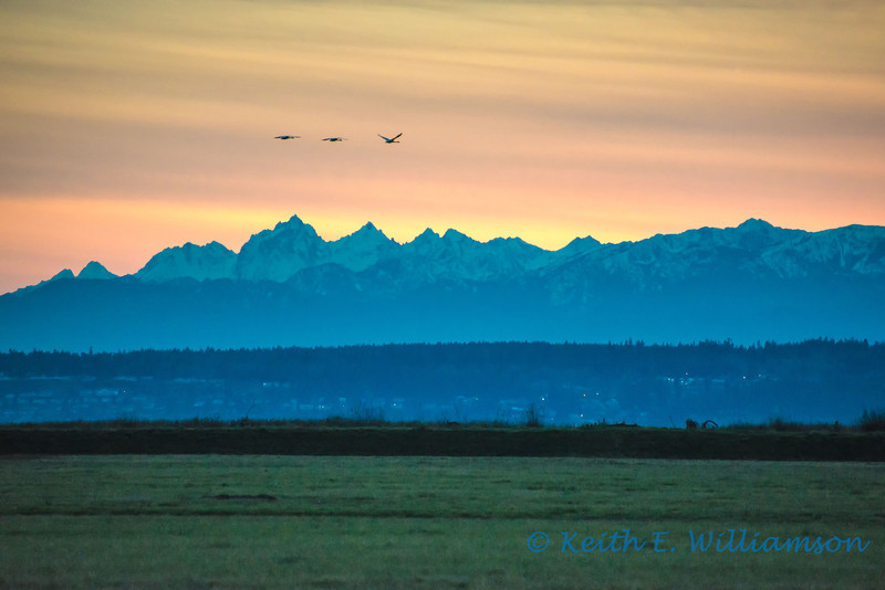 Olympic Mountains and Camano Island, from Stanwood.
