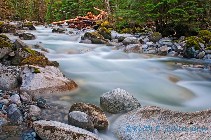 Tributary of the north fork of the Skykomish River