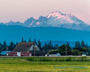 Barn on Fir Island, and Mount Baker, at sunset