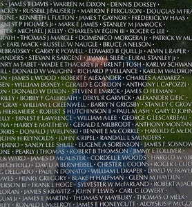 The Vietnam Memorial draws you in with its very simplicity......