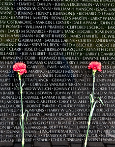 I only wish I had the talent to communicate just how it made me feel seeing this along the Memorial.......