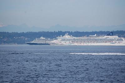 Cruise Ship Race