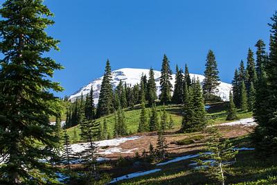 Mount Ranier -0115