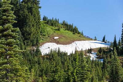 Mount Ranier -0102
