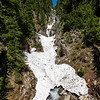 Mount Ranier -0295