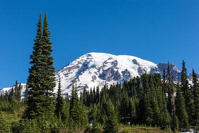 Mount Ranier -0090
