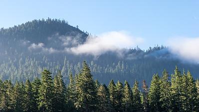 Mount Ranier -0048