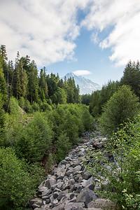 Mount Ranier -0021