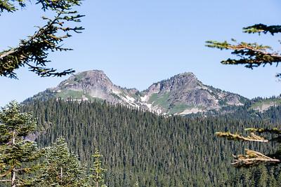 Mount Ranier -0080
