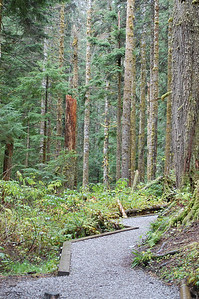 Mt. Baker – Snoqualmie National Forest Highway