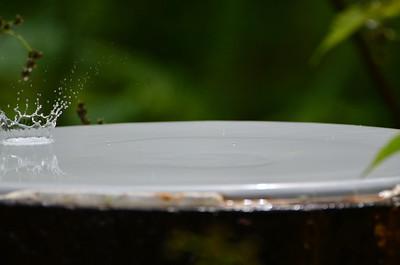 Drop on a rain drum