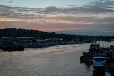 20160929.  Fisherman's Terminal harbor on Lake Washington Ship Channel, Seattle WA.  Photo taken from Ballard Bridge.