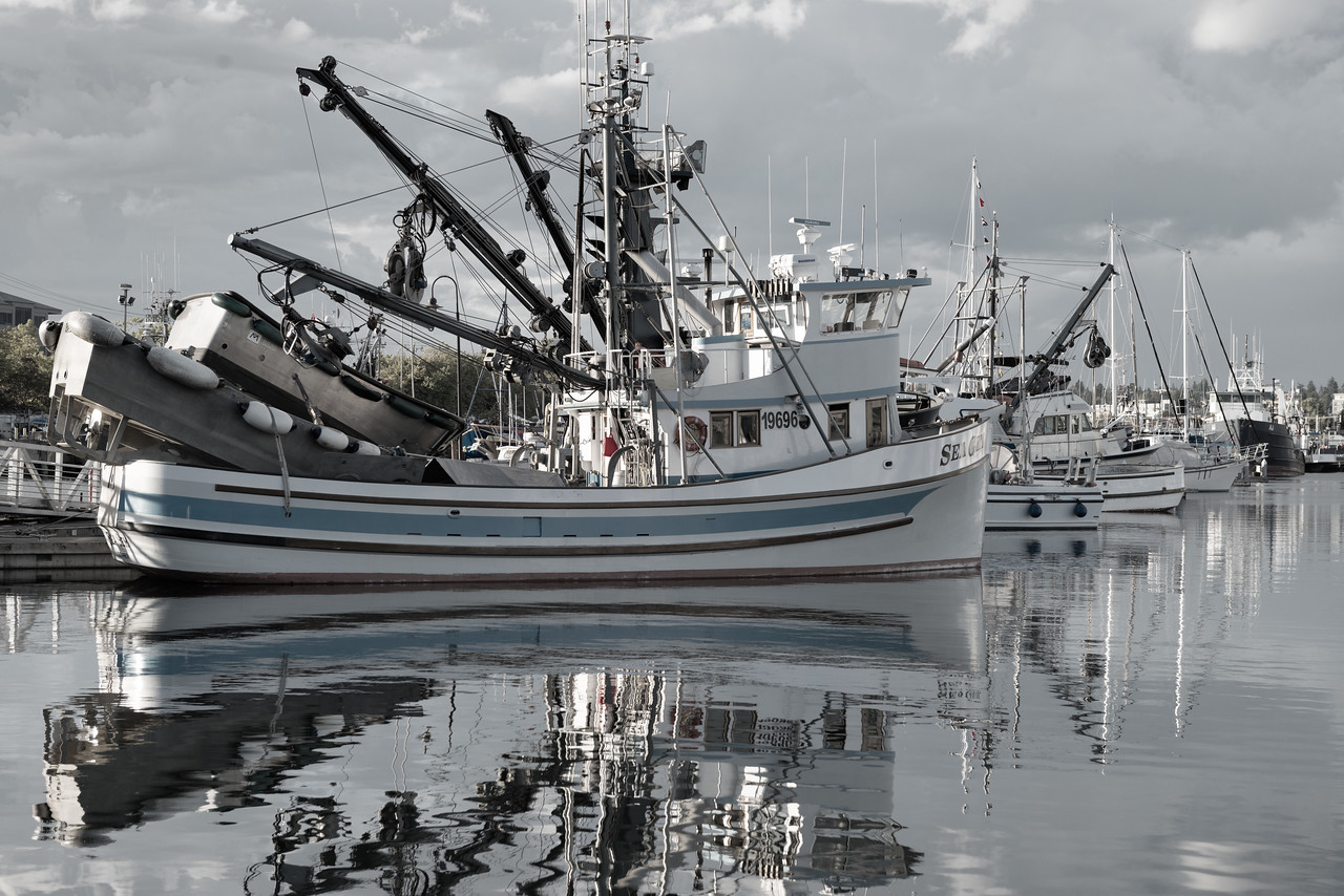 20160918. Boats at Port of Seattle Fisherman's Terminal.  This is a classic Purse Seine fishing boat.