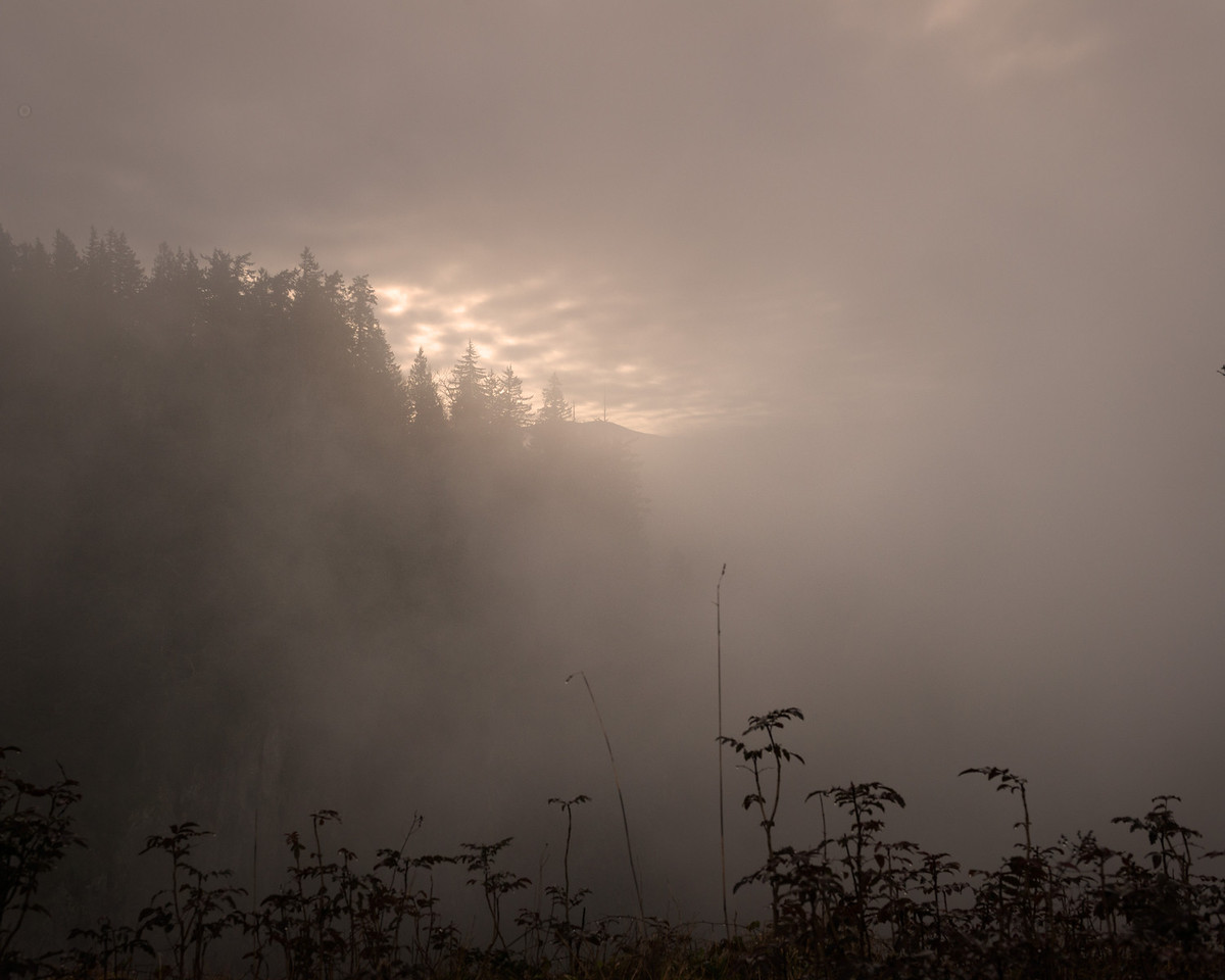 25 December 2013.  Fog above Snoqualmie Falls, Washington.