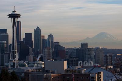 Birds traversing downtown Seattle near dusk.