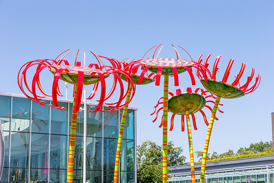Space Needle & Chihuly -0117
