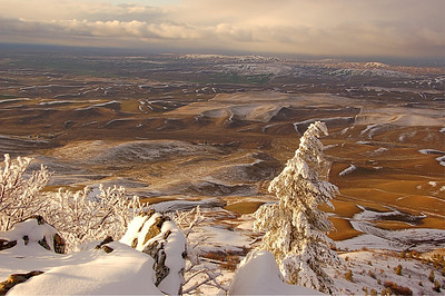 Winter Palouse from Steptoe