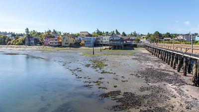 Whidbey Island -0167
