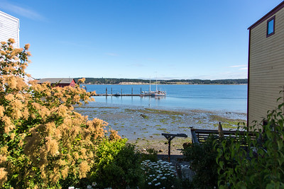 Whidbey Island -0162