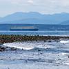 Whidbey Island -0250