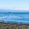 Whidbey Island -0255