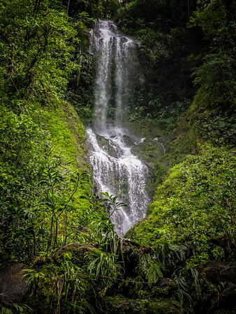 Into the Wilds of Costa Rica