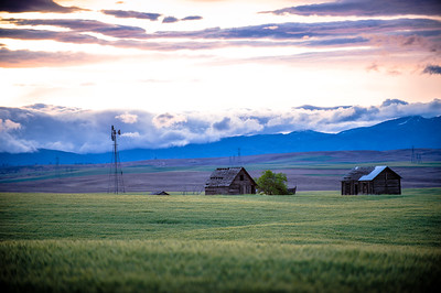 Wenatchee Farmland 2012