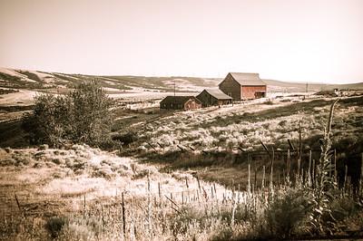 Waterville WA, Farmland