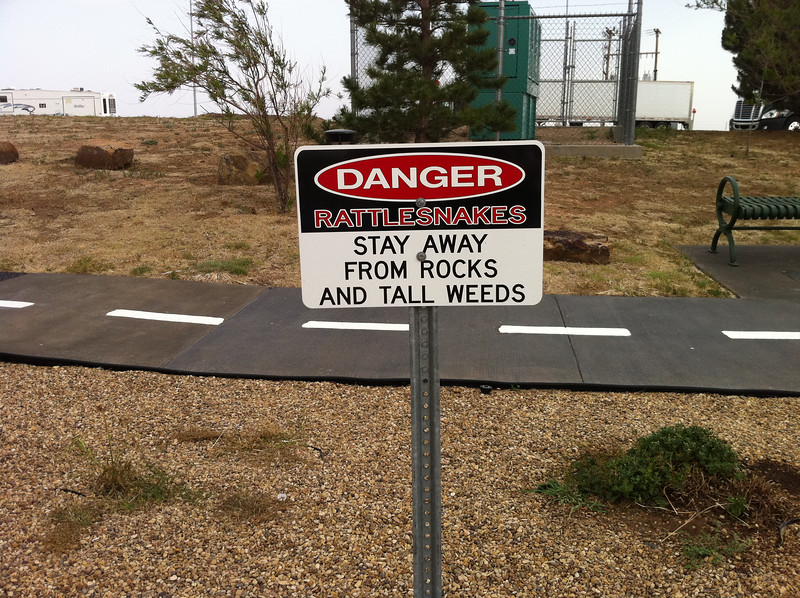 Danger Rattlesnakes Stay away from rocks and tall weeds