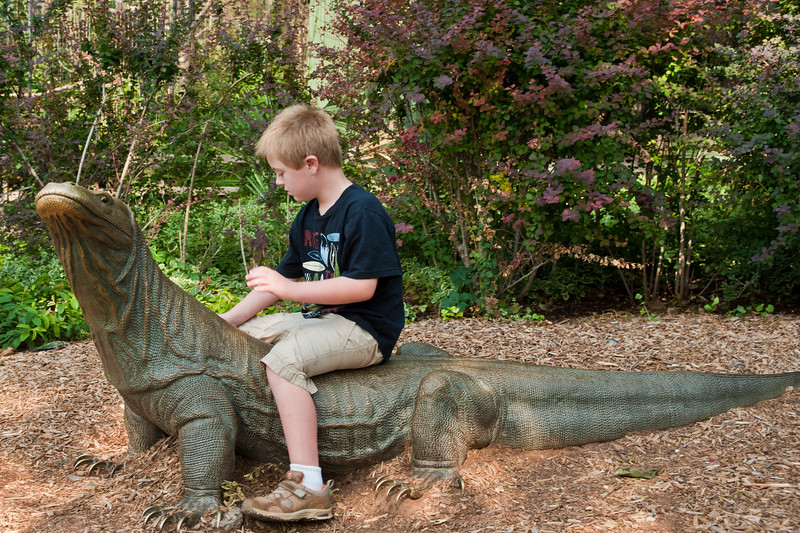 Vincent at The Oklahoma City Zoo