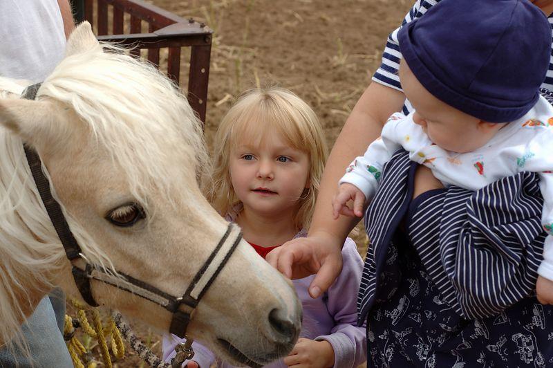 Ranch 2004
