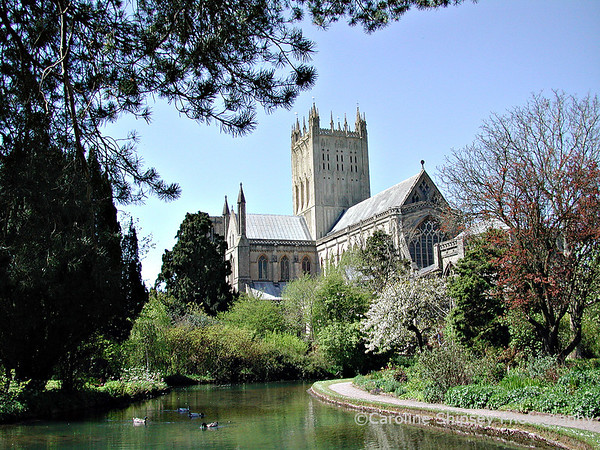 Wells Cathedral, view from the Wells, in the gardens of the Bishop's Palace