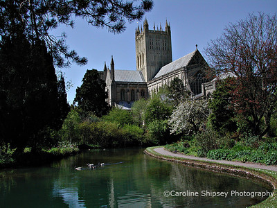 This view of Wells cathedral from 'The Wells' in the outer gardens of the Bishop's Palace is said to be one of the most photographed in England